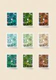 Collage capítulo de la foto - flor - planta imagen de archivo