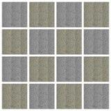 Collage capítulo de la foto - planta - hojas - arena imagenes de archivo