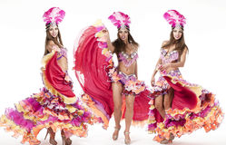 Collage, carnival dancer, amazing costume Stock Images