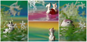Collage cat, dog, seal with heart Stock Photo