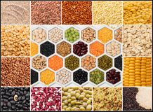 Collage of cereals and grains. Collage of various seeds of a plant of cereals and grains royalty free stock photography