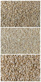 Collage che consiste del grano del grano intero, del grano tagliato e del fiocco di avena Fotografia Stock