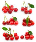 Collage from cherry Stock Photography