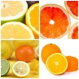 Collage of citrus Royalty Free Stock Photography