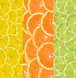 Collage with citrus-fruit of lime. lemon and orange slices. As background Stock Image