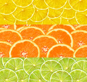 Collage with citrus-fruit of lime, lemon and orange slices. Top view royalty free stock photography