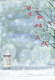 Collage - ciuffolotti sui rami di un albero fotografie stock libere da diritti
