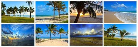Collage coast Diani Royalty Free Stock Image