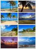 Collage coast Diani Stock Photo