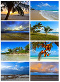 Collage coast Diani Royalty Free Stock Images