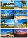Collage coast Diani Stock Image