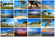 Collage coast Diani Stock Images