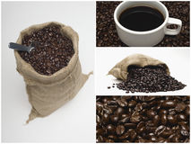 Collage of coffee and beans Royalty Free Stock Photo