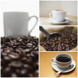 Collage of coffee and beans Stock Images