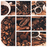 Collage of coffee beans and chocolate truffle Royalty Free Stock Photo