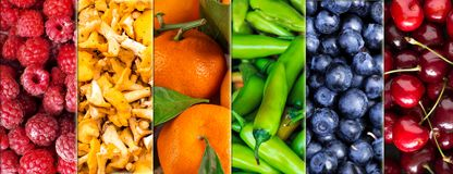 Collage of colorful fruits, mushrooms and vegetables. stock photography