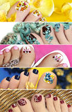 Collage of colorful pedicure. Stock Photos