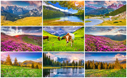 Collage with 9 colorful summer landscapes. Royalty Free Stock Photography