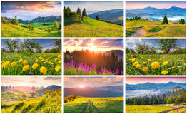 Collage with 9 colorful summer landscapes. Stock Images
