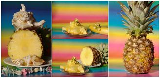 Collage con l'ananas e l'insalata Immagini Stock