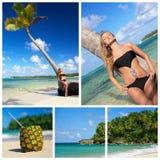 Collage con la donna in bikini vicino alla palma immagini stock libere da diritti