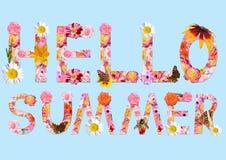 Collage con las flores y las mariposas Texto: ¡Hola verano! Imagenes de archivo
