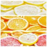 Collage con le fette degli agrumi Fotografia Stock Libera da Diritti
