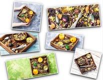 Collage con le foglie del fiore della tisana Fotografie Stock Libere da Diritti