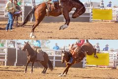 Cowboy And Bucking Saddle Bronco Collage. Collage of cowboy and horse competing in bucking saddle bronc event at country rodeo royalty free stock photo