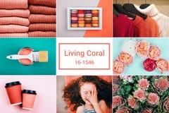 Collage creativo en color coralino de vida imagenes de archivo
