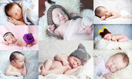 Collage with cute little newborn Royalty Free Stock Photography