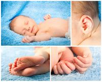Collage cute newborn baby Royalty Free Stock Photography