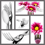 Collage of cutlery on a white background Stock Photos