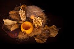 Collage d'automne avec les éléments normaux Photo libre de droits