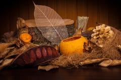Collage d'automne avec les éléments normaux Photographie stock libre de droits
