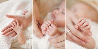 Collage d'un bébé nouveau-né dans des bras de sa mère Photos stock