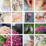 Collage dalle foto di cerimonia nuziale Immagine Stock