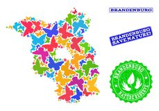 Collage de ahorro de la naturaleza del mapa del estado de Brandeburgo con las mariposas y los sellos texturizados stock de ilustración