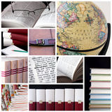 Collage de bibliothèque Photographie stock libre de droits