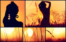 Collage de coucher du soleil. Images stock