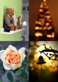 Collage de cuatro estación-eventos Foto de archivo libre de regalías