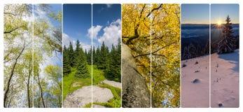 Collage de cuatro estaciones de banderas verticales Fotos de archivo
