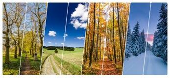 Collage de cuatro estaciones de tiros con los caminos en paisaje Foto de archivo libre de regalías