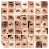 Collage de diversas imágenes de diversos ojos Foto de archivo libre de regalías
