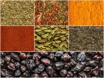 Collage de diverses herbes et épices comme fond Photographie stock libre de droits