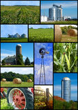 Collage de ferme Photos stock