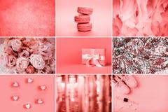Collage de fotos en colores coralinos de vida fotografía de archivo