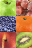 Collage de fruit Photo stock