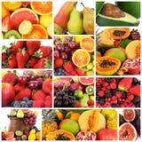 Collage de fruit sur le fond blanc Image stock