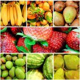 Collage de fruits Photos stock